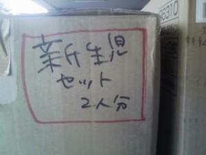 20110324155228